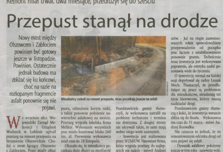 Wspólnota Puławska nr 13 (93) z dnia 31.03.2015r.