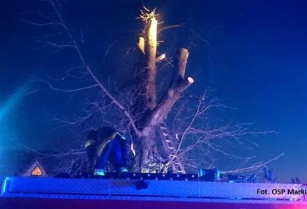 Zakończona tragicznie wycinka drzewa w Zabłociu