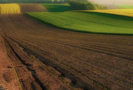 Rolniku nie stój w kolejce złóż swój wniosek o płatności bezpośrednie wcześniej